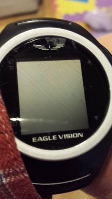 EeagleVisionWatch20150104_2.jpg