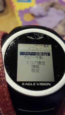 EeagleVisionWatch20150104_3.jpg