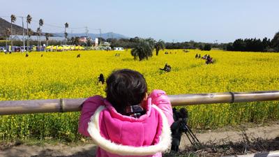 atsuminanohana20150228_4.jpg