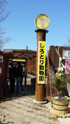 shirotorizoo20141231_1.jpg